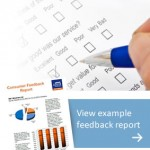 A small image of example consumer report